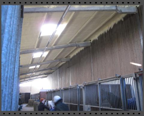 Decke von einem Pferdestall isolieren